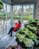 Keukenhof – cvetlični vrt Evrope | Lisse, Nizozemska