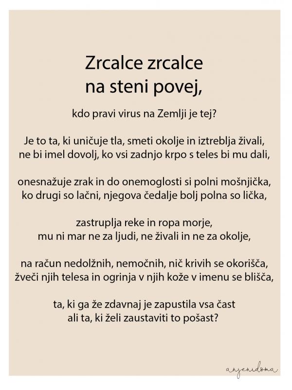 anjenidoma-zrcalce-poem